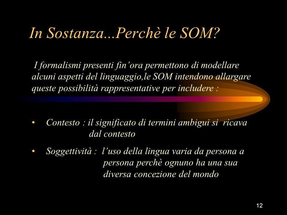 12 In Sostanza...Perchè le SOM.