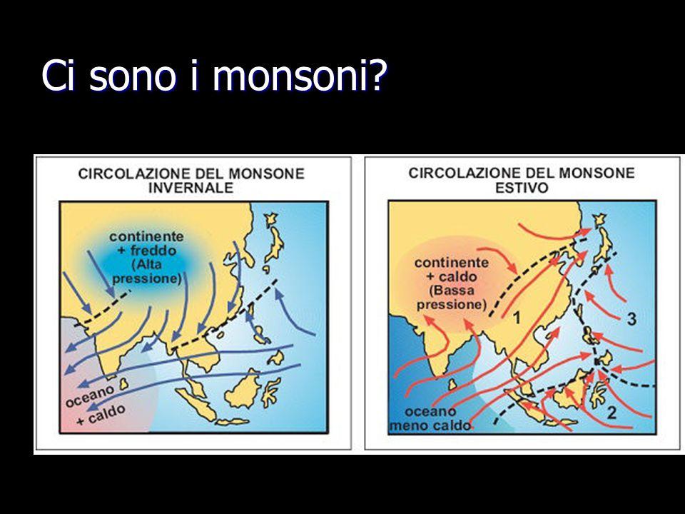 Ci sono i monsoni?