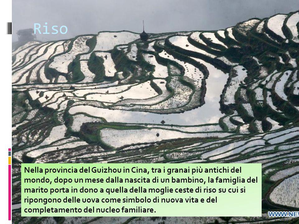 Riso in provincia di Novara Un tempo i grandi produttori di riso delle province di Novara, Vercelli e Pavia per le ricchezze accumulate Erano chiamati gli Sceicchi Bianchi