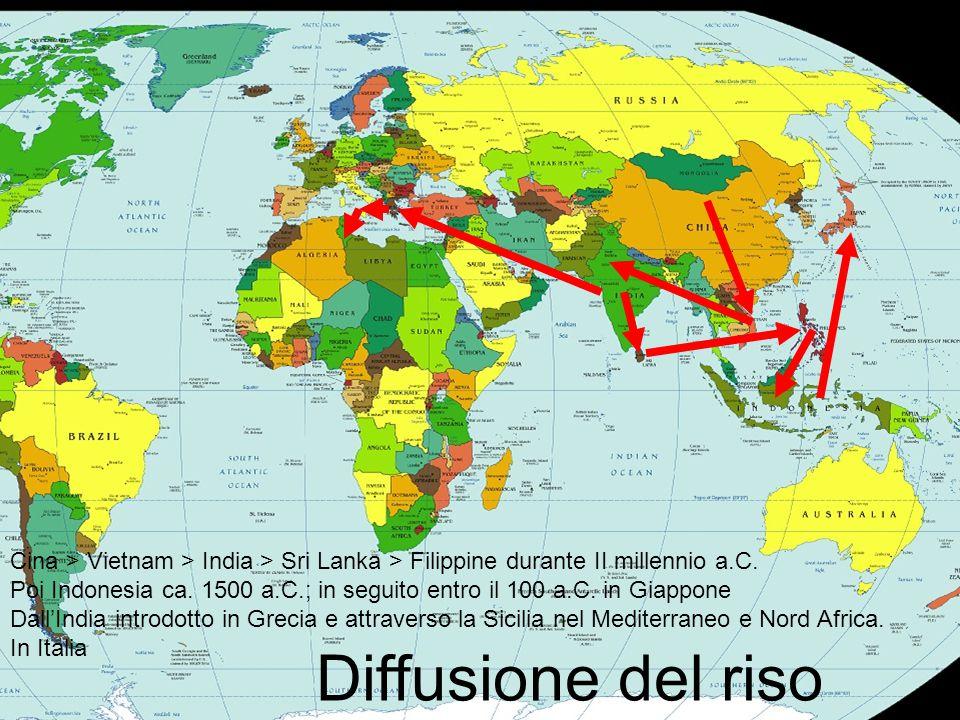 Diffusione del riso Cina > Vietnam > India > Sri Lanka > Filippine durante II millennio a.C. Poi Indonesia ca. 1500 a.C.; in seguito entro il 100 a.C.
