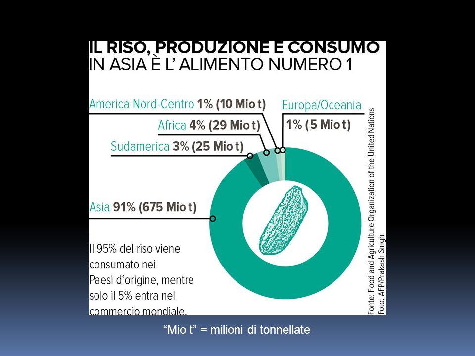 720 milioni di tonnellate produzione mondiale riso 90% produzione totale dai Paesi Asiatici (Cina e India soprattutto) 160 milioni di ettari area coltivazione riso 1/10 intera superficie terrestre uso agricolo coltivata a riso Più di 200 milioni aziende agricole producono riso nel continente asiatico