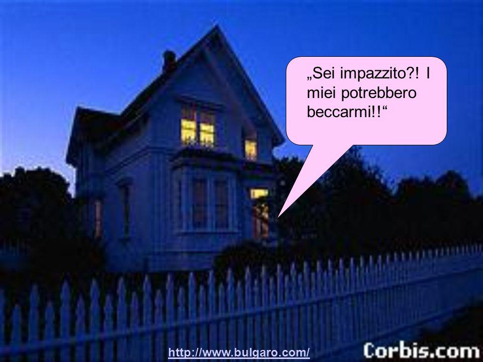 """http://www.bulgaro.com/ """"Tranqua! Chi vuoi che ci veda a quest'ora?!"""