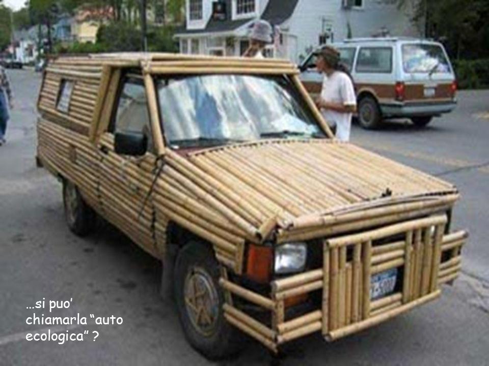 …si puo' chiamarla auto ecologica