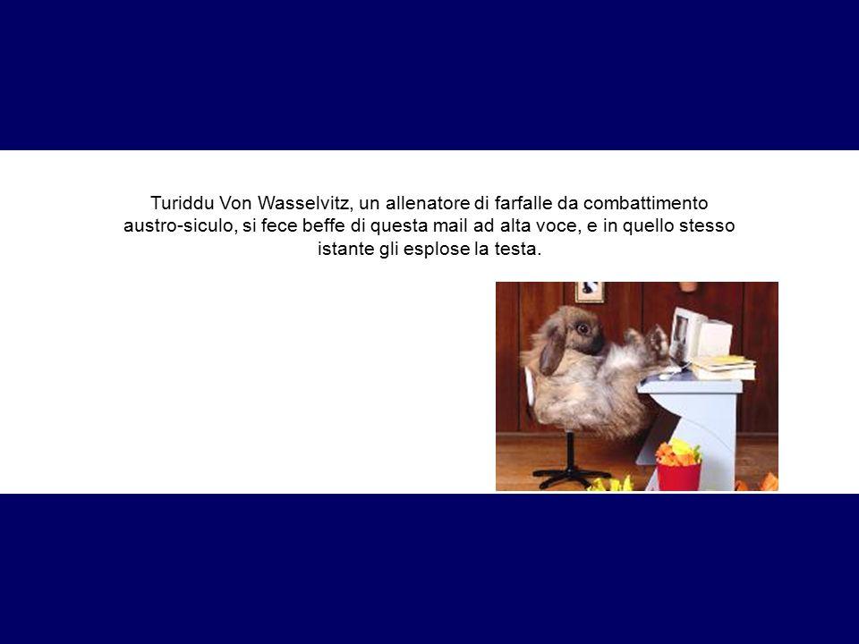 Turiddu Von Wasselvitz, un allenatore di farfalle da combattimento austro-siculo, si fece beffe di questa mail ad alta voce, e in quello stesso istant
