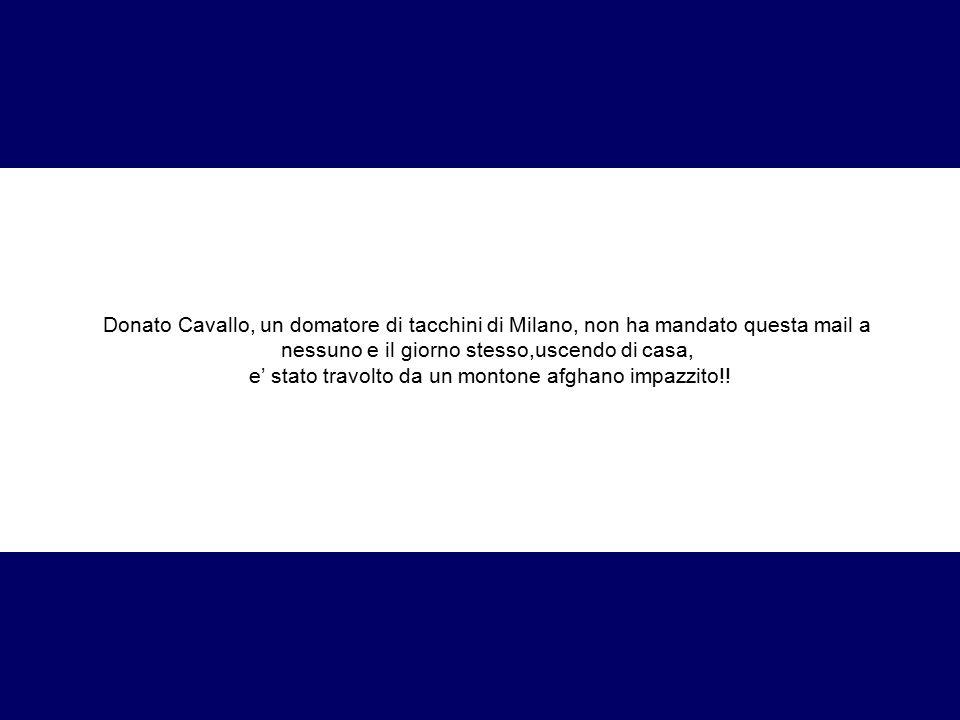 Donato Cavallo, un domatore di tacchini di Milano, non ha mandato questa mail a nessuno e il giorno stesso,uscendo di casa, e' stato travolto da un mo