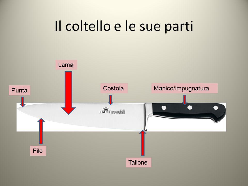 Il coltello e le sue parti Lama Costola Punta Manico/impugnatura Filo Tallone