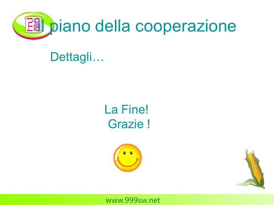 il piano della cooperazione Dettagli… La Fine! Grazie !