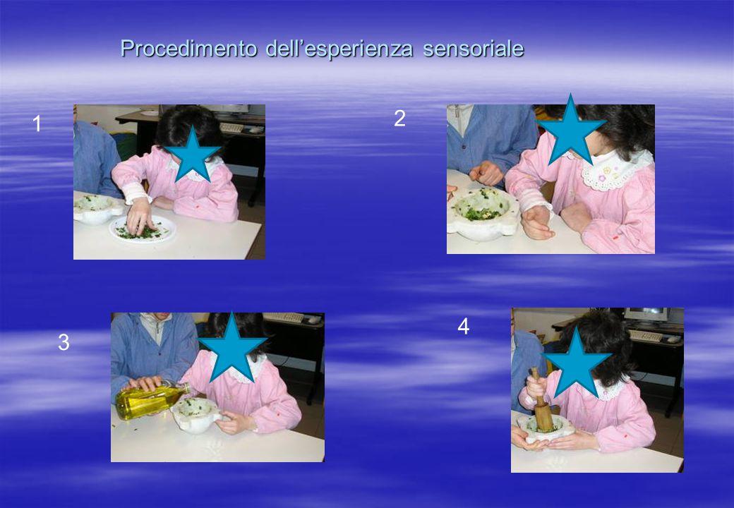 Procedimento dell'esperienza sensoriale 1 2 3 4