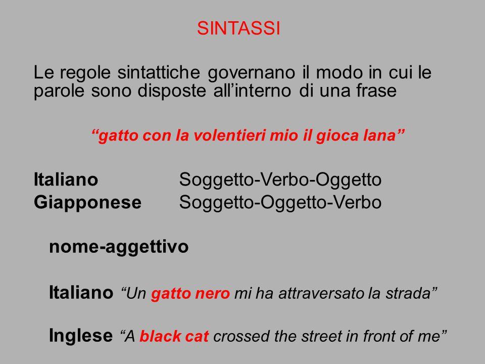 """Le regole sintattiche governano il modo in cui le parole sono disposte all'interno di una frase """"gatto con la volentieri mio il gioca lana"""" ItalianoSo"""