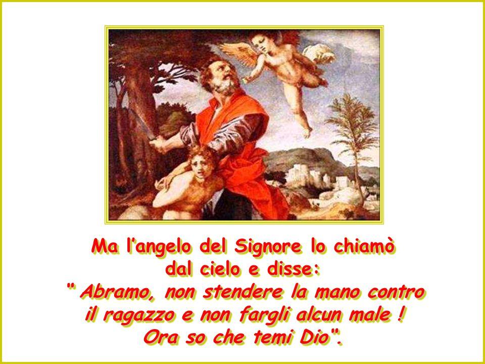 Abramo rispose: Dio stesso provvederà l'agnello per l'olocausto, figlio mio .