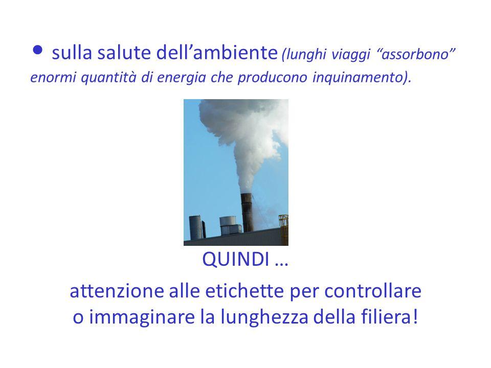 sulla salute dell'ambiente (lunghi viaggi assorbono enormi quantità di energia che producono inquinamento).