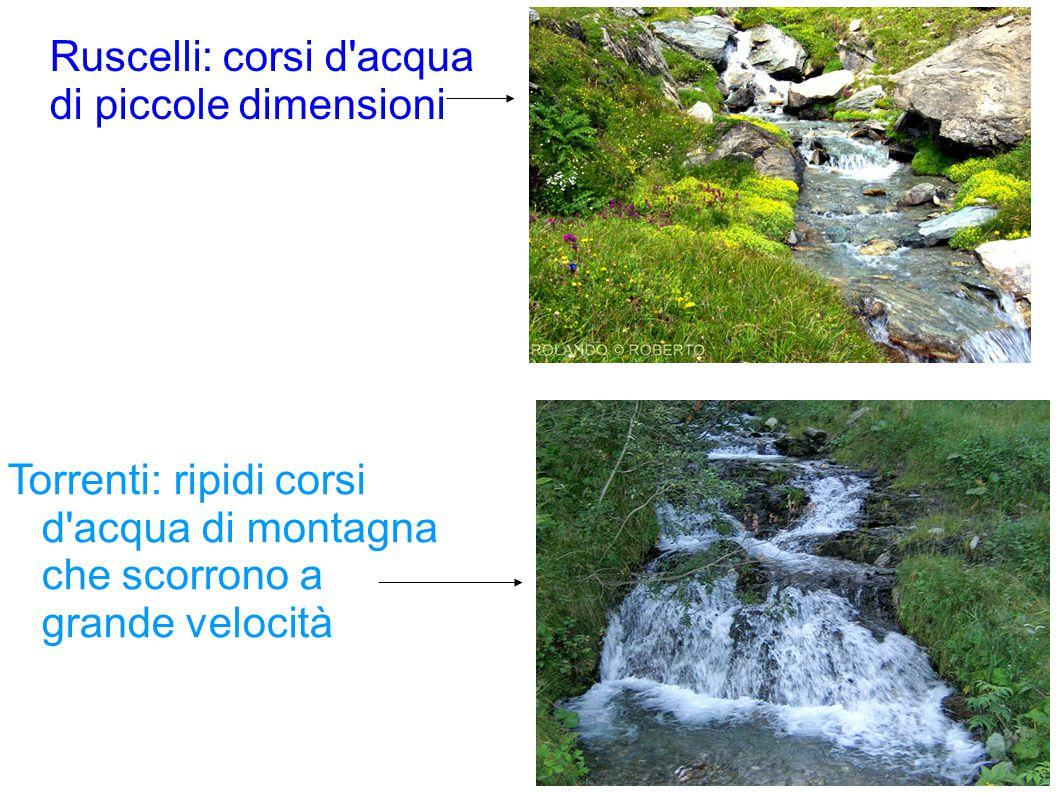 Ruscelli: corsi d acqua di piccole dimensioni Torrenti: ripidi corsi d acqua di montagna che scorrono a grande velocità