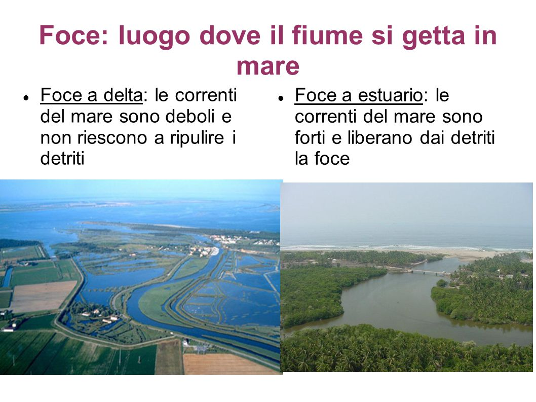 Foce: luogo dove il fiume si getta in mare Foce a delta: le correnti del mare sono deboli e non riescono a ripulire i detriti Foce a estuario: le correnti del mare sono forti e liberano dai detriti la foce