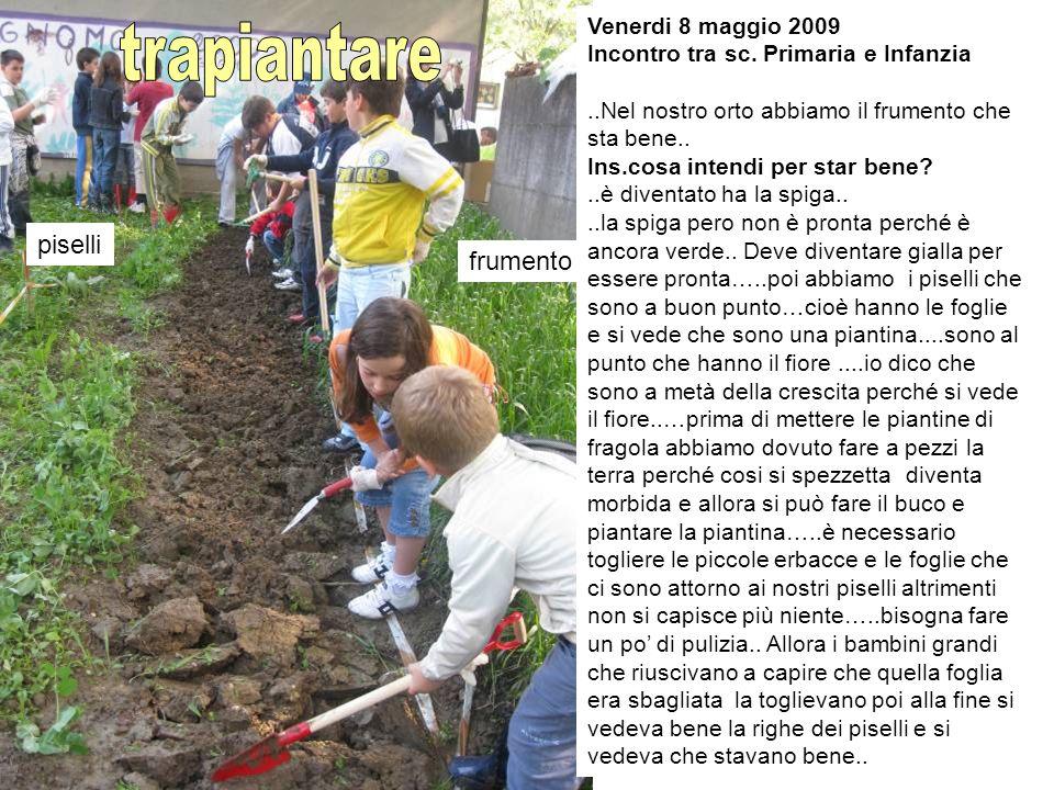 Venerdi 8 maggio 2009 Incontro tra sc.