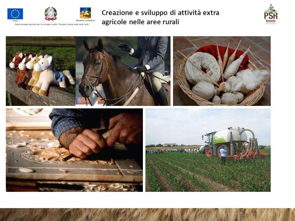 Creazione e sviluppo di attività extra agricole nelle aree rurali