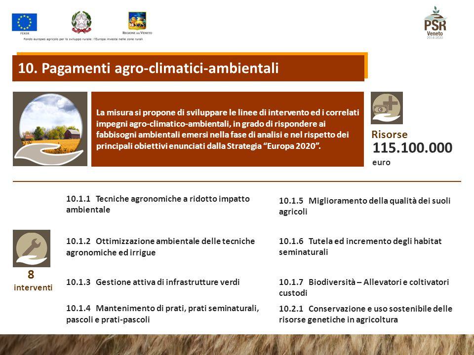 8 interventi 10.1.1 Tecniche agronomiche a ridotto impatto ambientale 10.1.2 Ottimizzazione ambientale delle tecniche agronomiche ed irrigue 10.1.3 Gestione attiva di infrastrutture verdi La misura si propone di sviluppare le linee di intervento ed i correlati impegni agro-climatico-ambientali, in grado di rispondere ai fabbisogni ambientali emersi nella fase di analisi e nel rispetto dei principali obiettivi enunciati dalla Strategia Europa 2020 .
