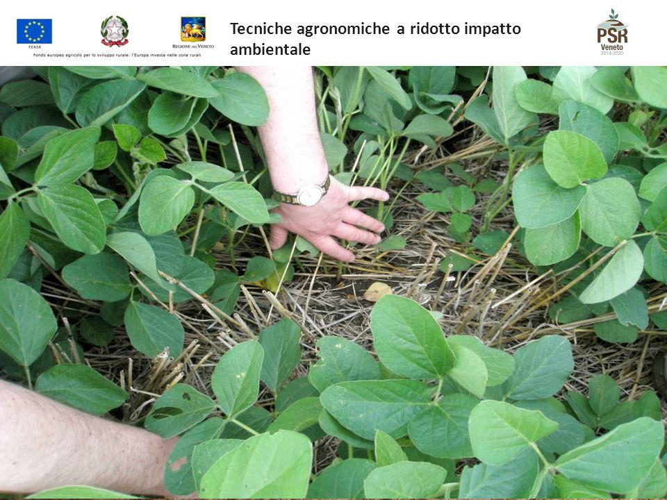 Tecniche agronomiche a ridotto impatto ambientale