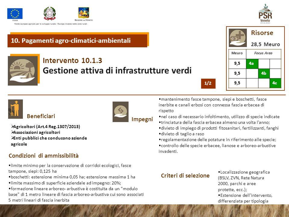 10.1.3 Intervento Gestione attiva di infrastrutture verdi 10. Pagamenti agro-climatici-ambientali Risorse 28,5 Meuro MeuroFocus Area 9,54a 9,54b 9,54c