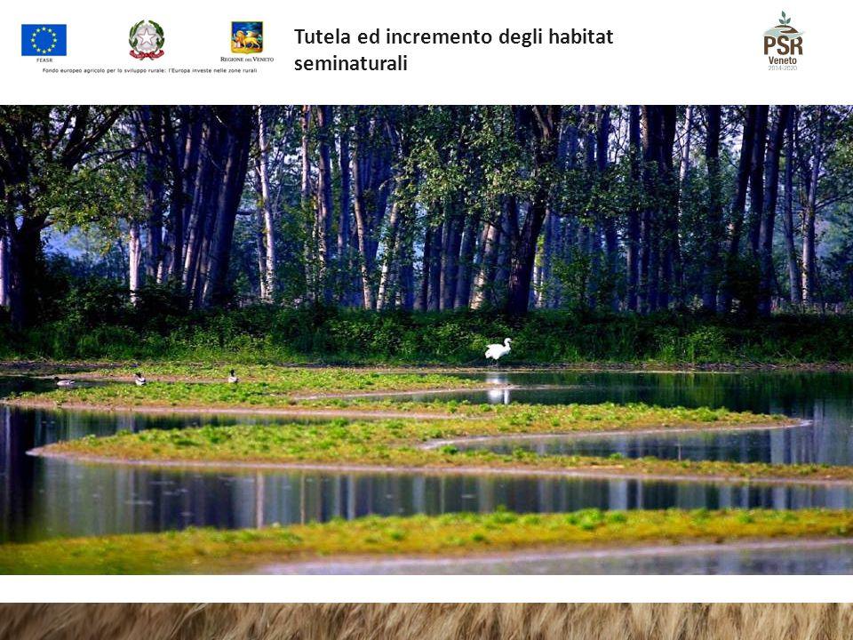 Tutela ed incremento degli habitat seminaturali