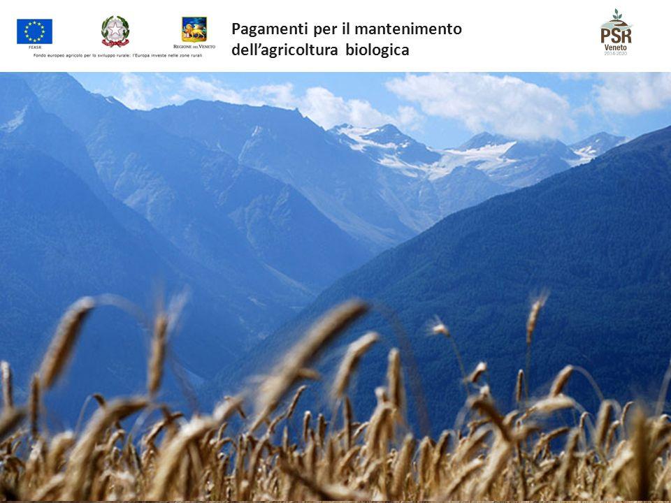 Pagamenti per il mantenimento dell'agricoltura biologica