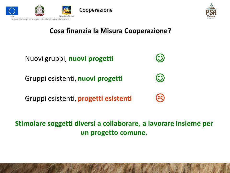 Cosa finanzia la Misura Cooperazione? Nuovi gruppi, nuovi progetti Gruppi esistenti, nuovi progetti Gruppi esistenti, progetti esistenti  Stimolare s