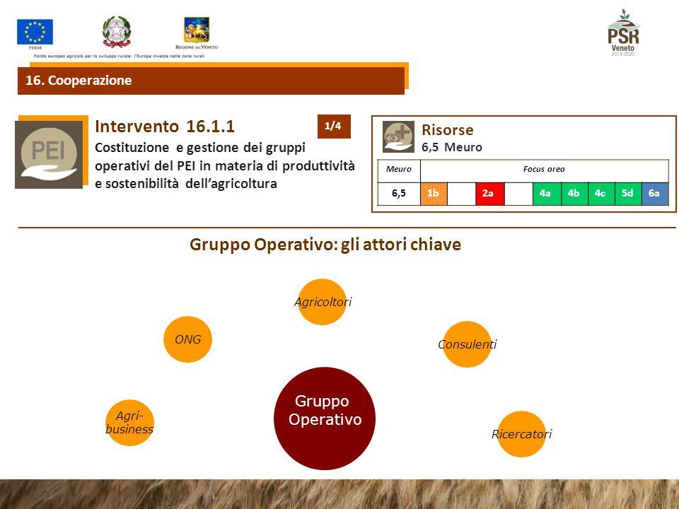 16.1.1Intervento Costituzione e gestione dei gruppi operativi del PEI in materia di produttività e sostenibilità dell'agricoltura 16. Cooperazione Ris