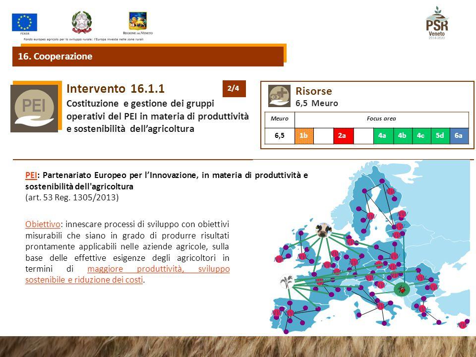 16.1.1Intervento Costituzione e gestione dei gruppi operativi del PEI in materia di produttività e sostenibilità dell'agricoltura 16.