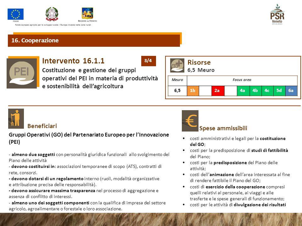 16.1.1Intervento Costituzione e gestione dei gruppi operativi del PEI in materia di produttività e sostenibilità dell'agricoltura Beneficiari Spese ammissibili Gruppi Operativi (GO) del Partenariato Europeo per l'Innovazione (PEI) - almeno due soggetti con personalità giuridica funzionali allo svolgimento del Piano delle attività - devono costituirsi in: associazioni temporanee di scopo (ATS), contratti di rete, consorzi.