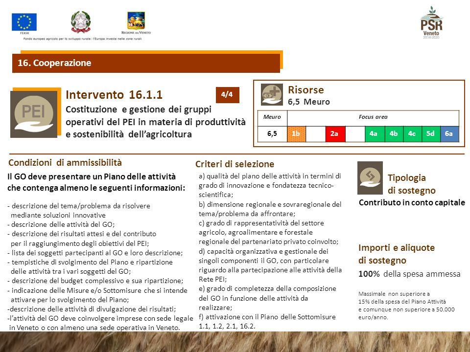 16.1.1Intervento Costituzione e gestione dei gruppi operativi del PEI in materia di produttività e sostenibilità dell'agricoltura Tipologia di sostegn