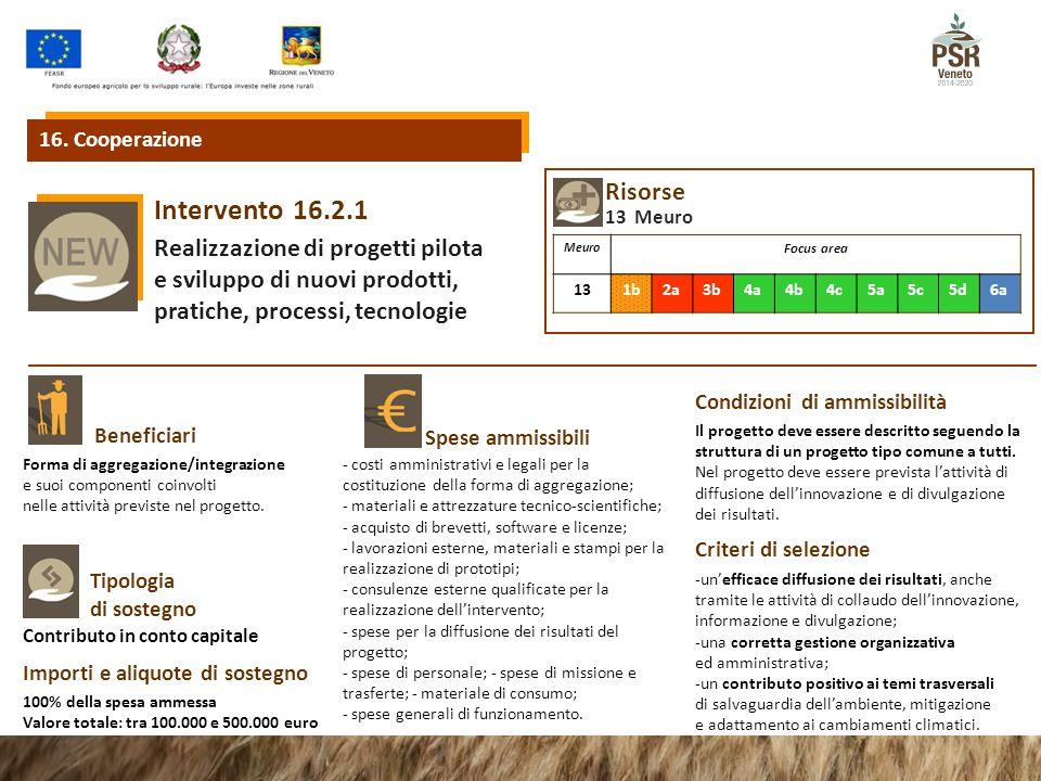 16.2.1Intervento Realizzazione di progetti pilota e sviluppo di nuovi prodotti, pratiche, processi, tecnologie Beneficiari Spese ammissibili 16.