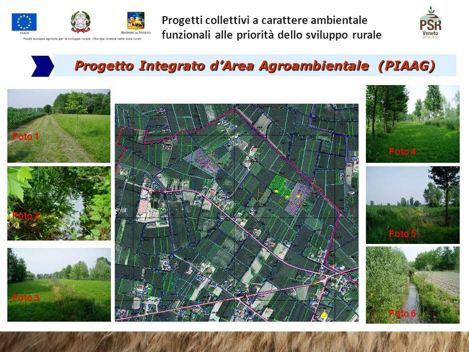 Progetto Integrato d'Area Agroambientale (PIAAG) Foto 4 Foto 5 Foto 6 Foto 1 Foto 2 Foto 3 Progetti collettivi a carattere ambientale funzionali alle