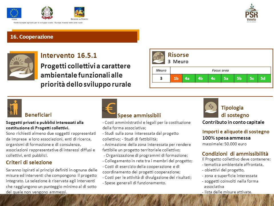 16.5.1Intervento Progetti collettivi a carattere ambientale funzionali alle priorità dello sviluppo rurale Beneficiari Spese ammissibili 16. Cooperazi