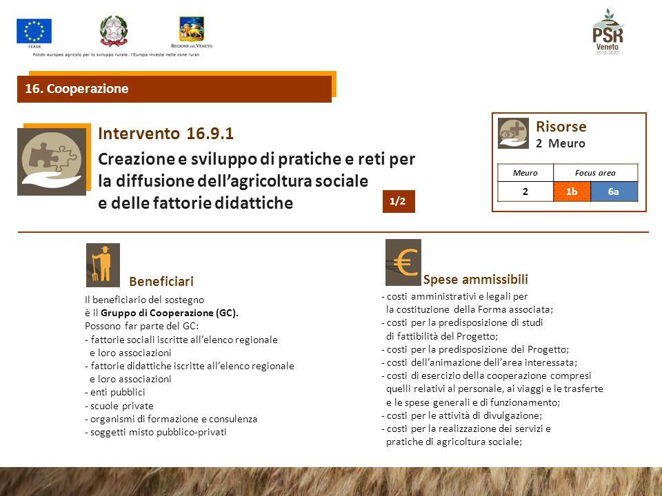 16.9.1Intervento Creazione e sviluppo di pratiche e reti per la diffusione dell'agricoltura sociale e delle fattorie didattiche Beneficiari Spese ammissibili 16.