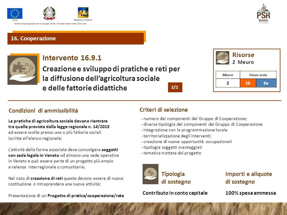 16.9.1Intervento Creazione e sviluppo di pratiche e reti per la diffusione dell'agricoltura sociale e delle fattorie didattiche 16. Cooperazione Condi