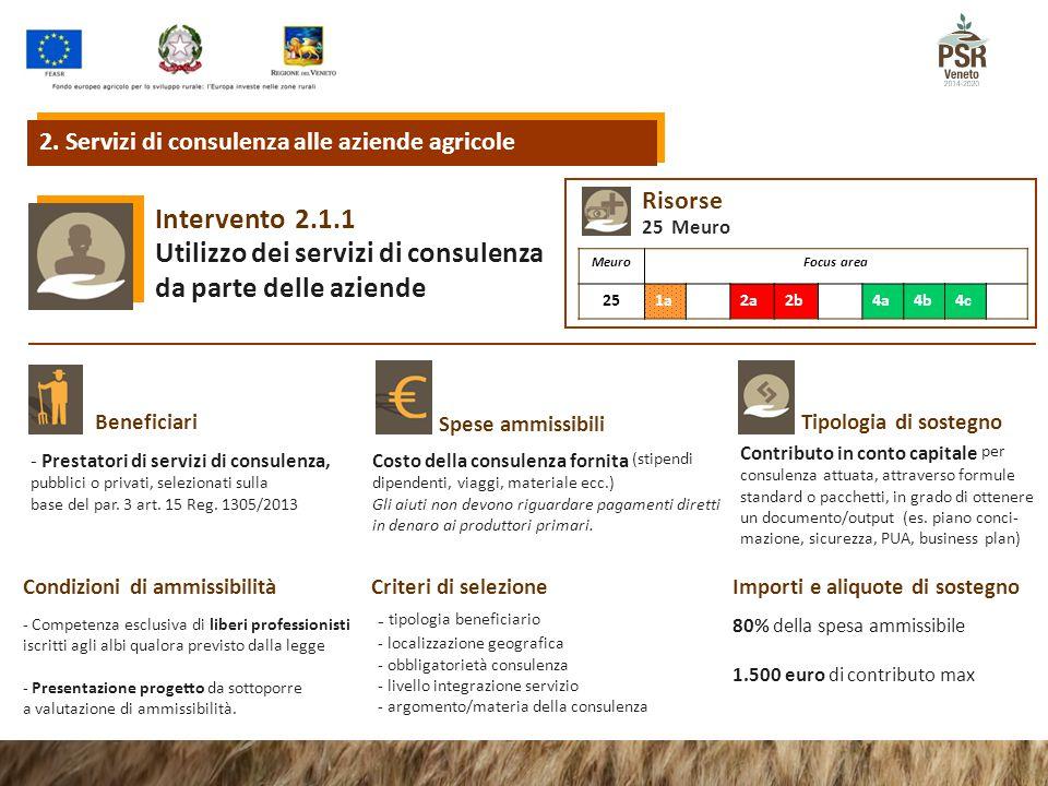 2.1.1Intervento Utilizzo dei servizi di consulenza da parte delle aziende Tipologia di sostegnoBeneficiari Spese ammissibili Condizioni di ammissibili