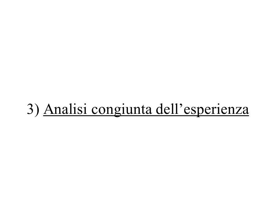 3) Analisi congiunta dell'esperienza