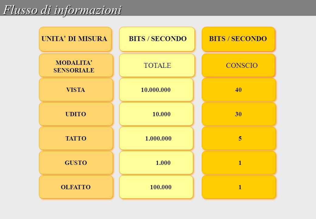 Flusso di informazioni UNITA ' DI MISURA BITS / SECONDO MODALITA ' SENSORIALE TOTALECONSCIO VISTA BITS / SECONDO VISTA UDITO TATTO GUSTO OLFATTO 10.00