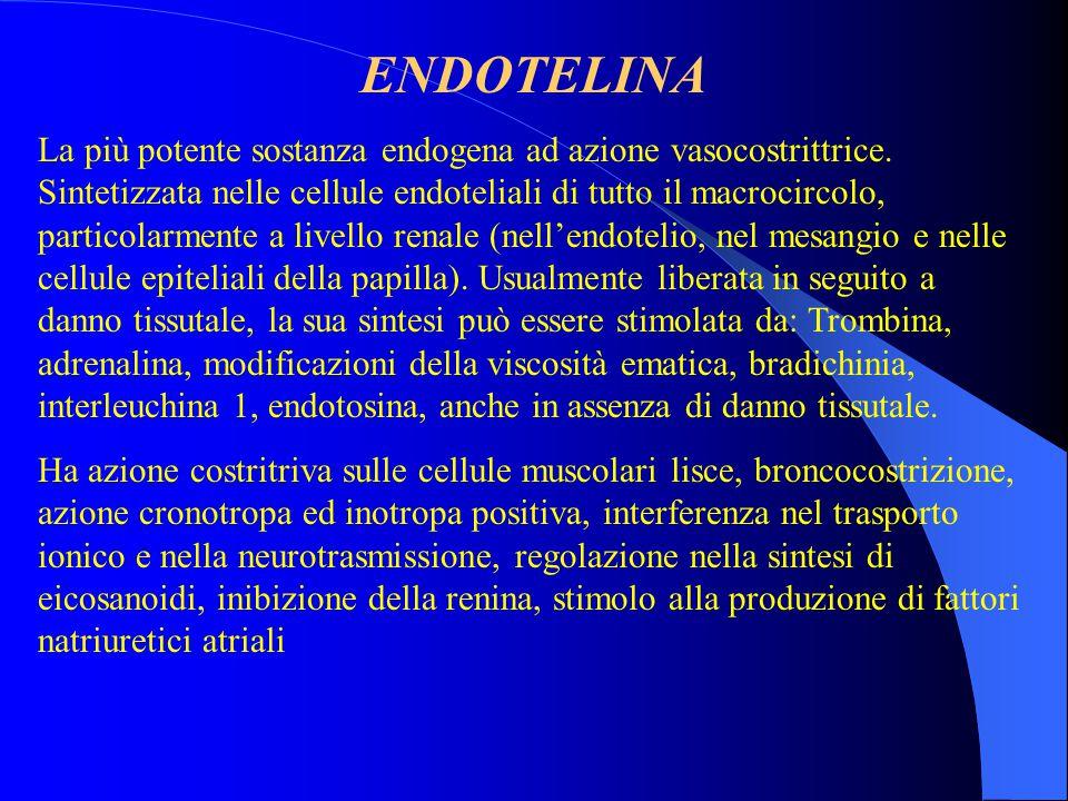 ENDOTELINA La più potente sostanza endogena ad azione vasocostrittrice. Sintetizzata nelle cellule endoteliali di tutto il macrocircolo, particolarmen