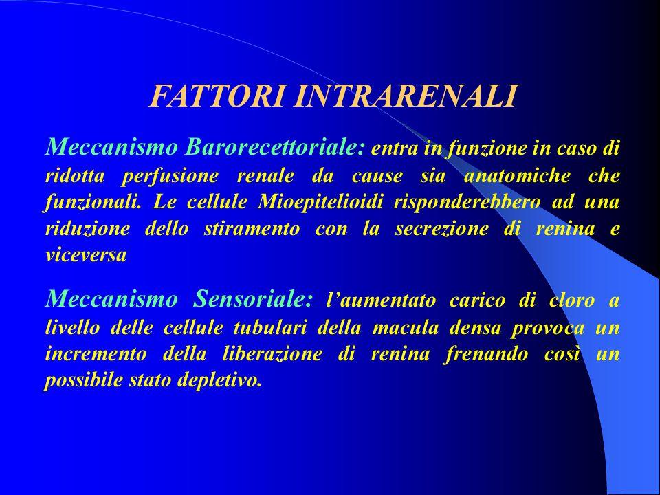 FATTORI INTRARENALI Meccanismo Barorecettoriale: entra in funzione in caso di ridotta perfusione renale da cause sia anatomiche che funzionali. Le cel