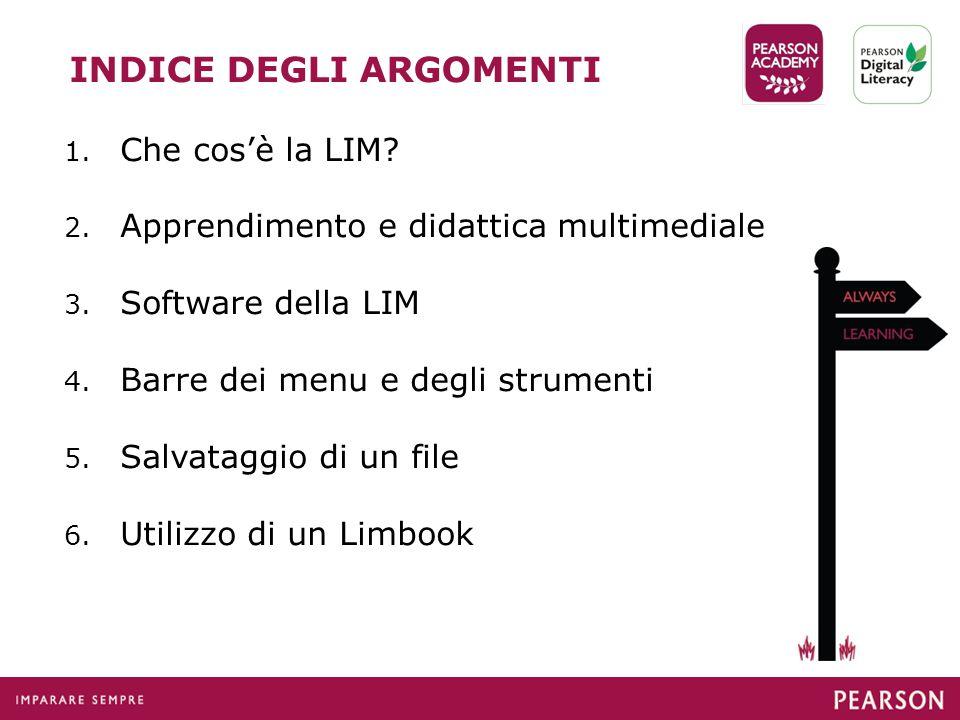 INDICE DEGLI ARGOMENTI 1.Che cos'è la LIM. 2. Apprendimento e didattica multimediale 3.