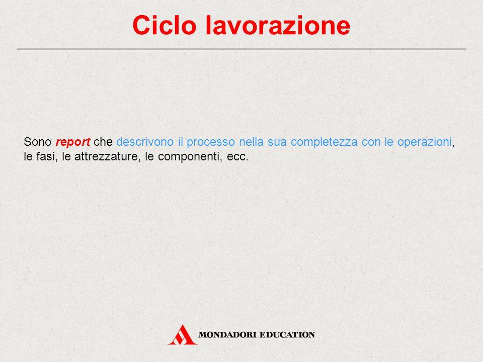 Ciclo lavorazione Sono report che descrivono il processo nella sua completezza con le operazioni, le fasi, le attrezzature, le componenti, ecc.