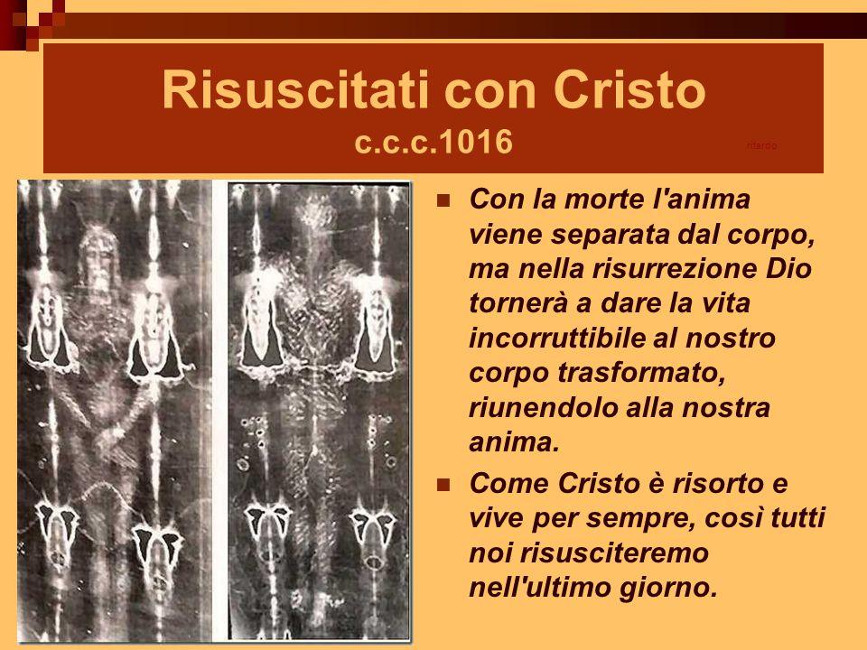Risuscitati con Cristo c.c.c.1016 Con la morte l'anima viene separata dal corpo, ma nella risurrezione Dio tornerà a dare la vita incorruttibile al no