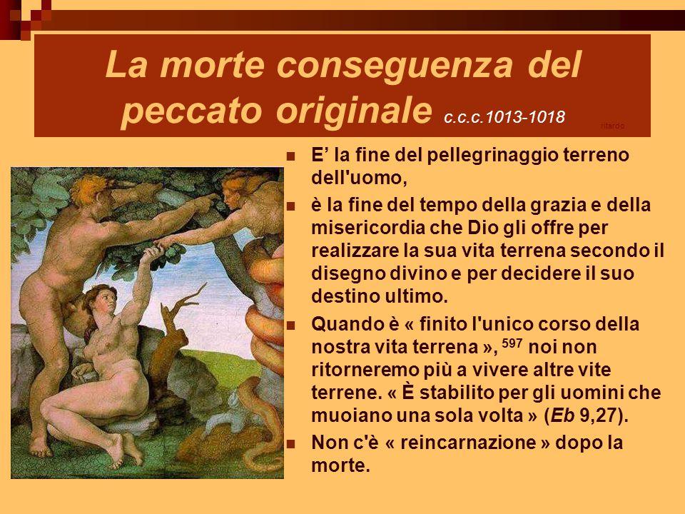 La morte conseguenza del peccato originale c.c.c.1013-1018 E' la fine del pellegrinaggio terreno dell'uomo, è la fine del tempo della grazia e della m