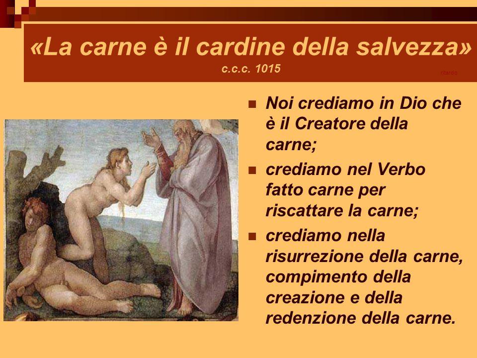 «La carne è il cardine della salvezza» c.c.c. 1015 Noi crediamo in Dio che è il Creatore della carne; crediamo nel Verbo fatto carne per riscattare la