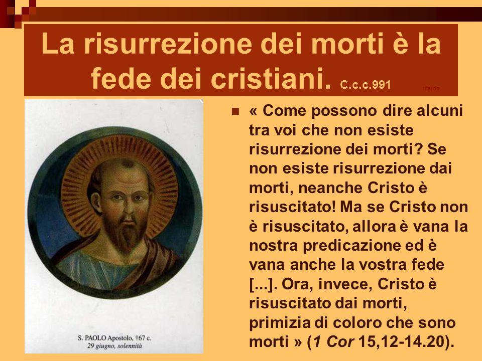La risurrezione dei morti è la fede dei cristiani. C.c.c.991 « Come possono dire alcuni tra voi che non esiste risurrezione dei morti? Se non esiste r