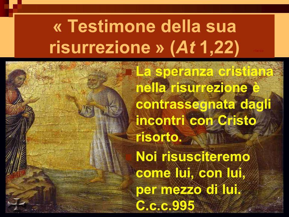 « Testimone della sua risurrezione » (At 1,22) La speranza cristiana nella risurrezione è contrassegnata dagli incontri con Cristo risorto. Noi risusc