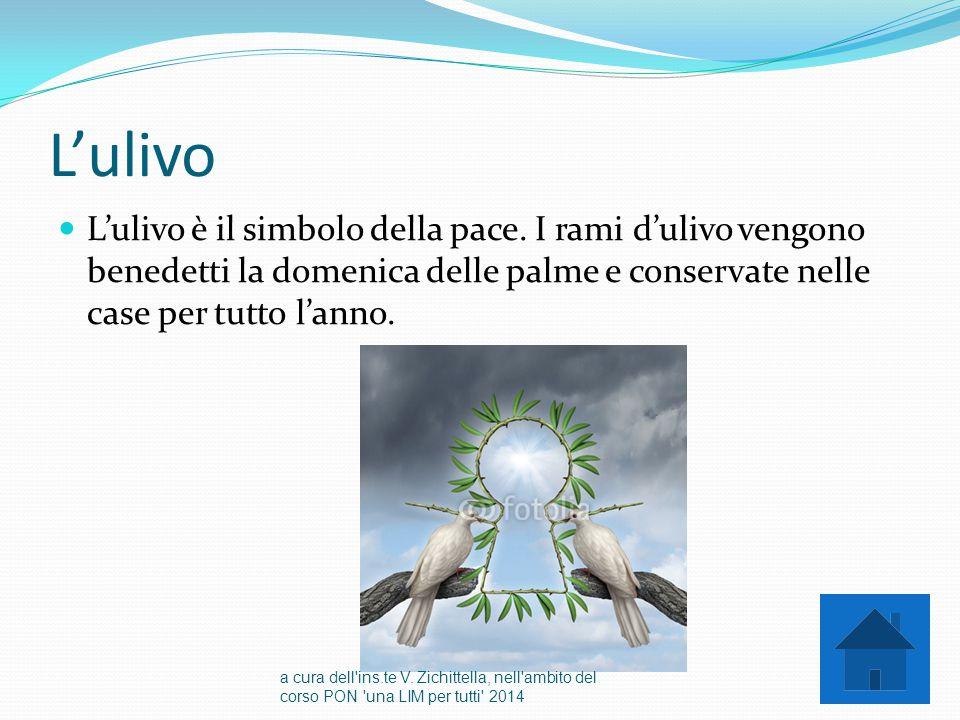 L'ulivo L'ulivo è il simbolo della pace. I rami d'ulivo vengono benedetti la domenica delle palme e conservate nelle case per tutto l'anno. a cura del