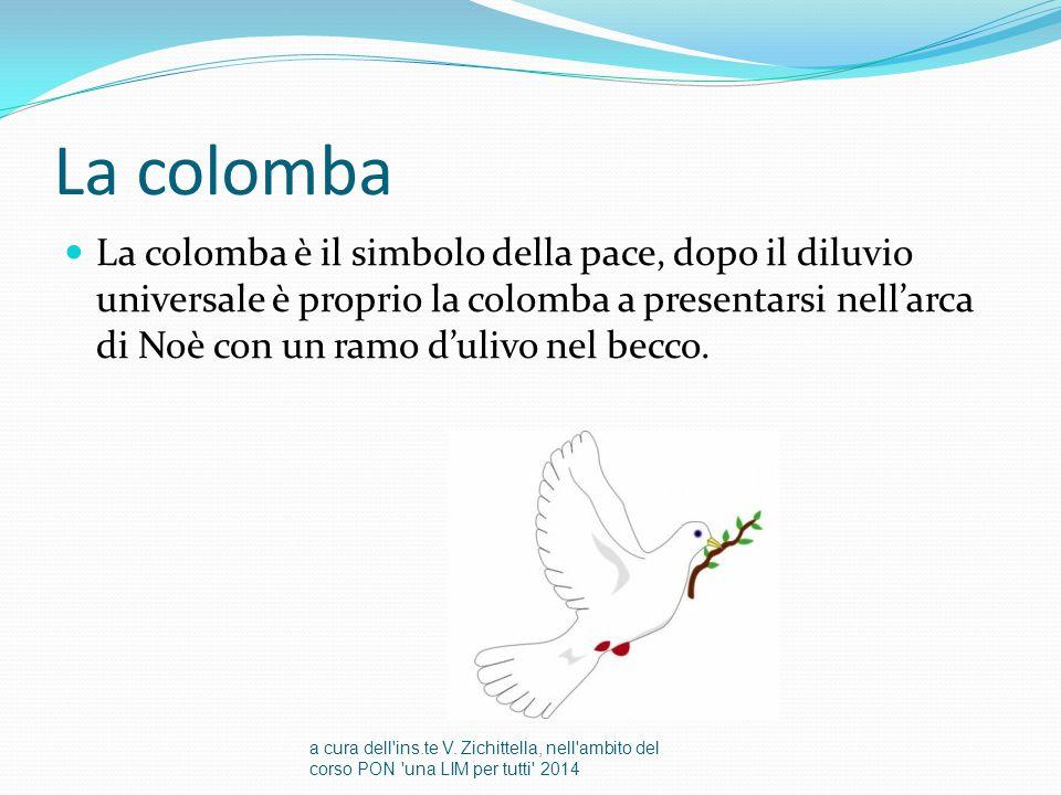La colomba La colomba è il simbolo della pace, dopo il diluvio universale è proprio la colomba a presentarsi nell'arca di Noè con un ramo d'ulivo nel becco.