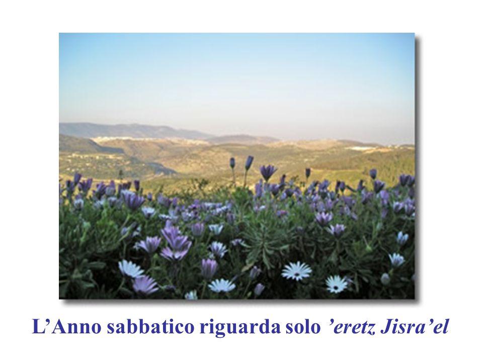 L'Anno sabbatico riguarda solo 'eretz Jisra'el