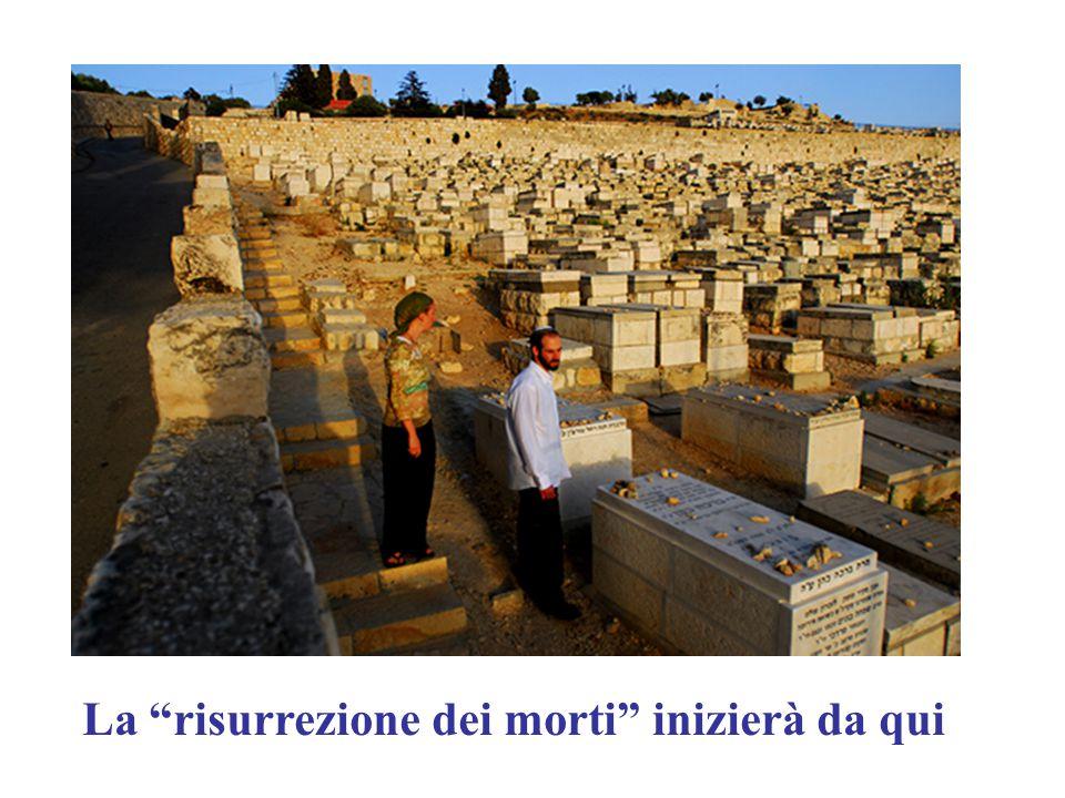 """La """"risurrezione dei morti"""" inizierà da qui"""